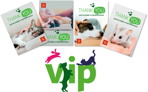 T-cHJldmlldw%3D%3D-5f742cd97a11e-pets-at-home-vip-club-imagery_5f742cd97982d.png