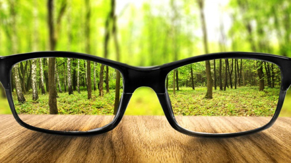 Tab919a28e984-glasses-legitimate-interest_5ab919a28e890-20.jpg